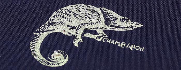 шелкотрафаретная печать на ткани , эфект хамелеона, достигается при печати специальной металлизированной краской,.